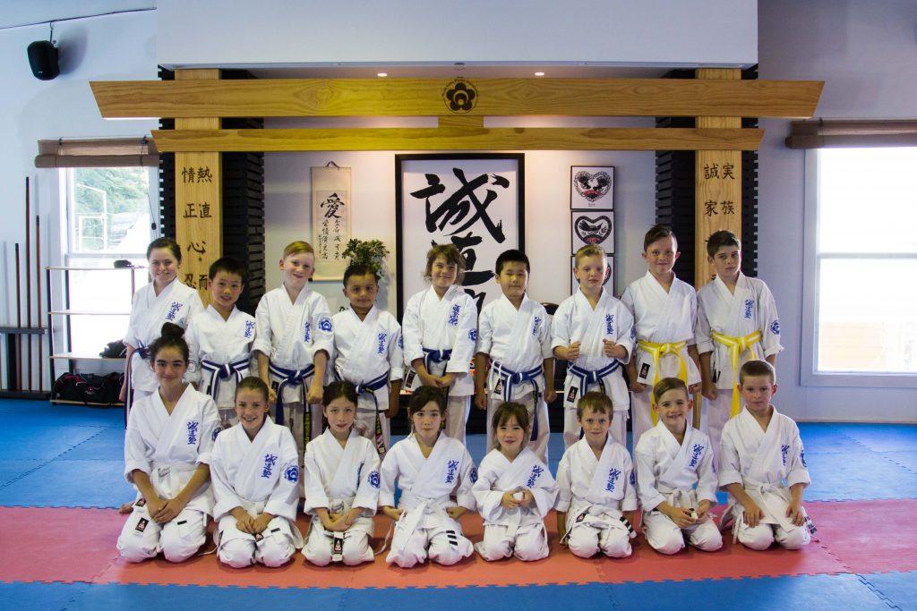 Dojo Junior Academy Group 2017